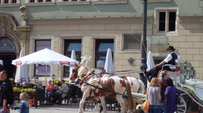 Krakow_2010_069