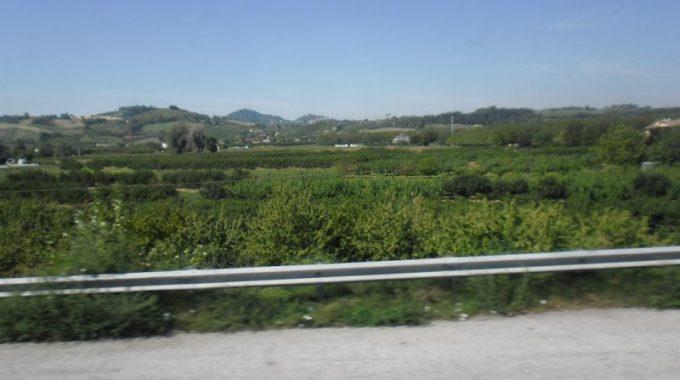 P_wlochy_2012_009